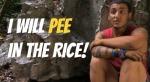 hantz rice
